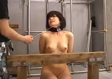 【閲覧注意】鞭で尻を打ったり吹き矢を刺したりおっぱいに太い針を通すガチSM動画